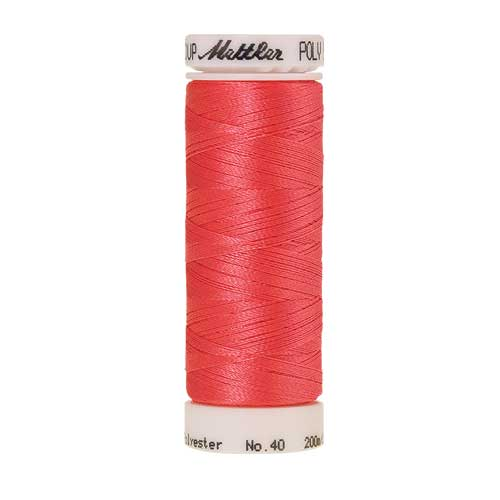 1753 - Strawberries n' Cream Poly Sheen Thread